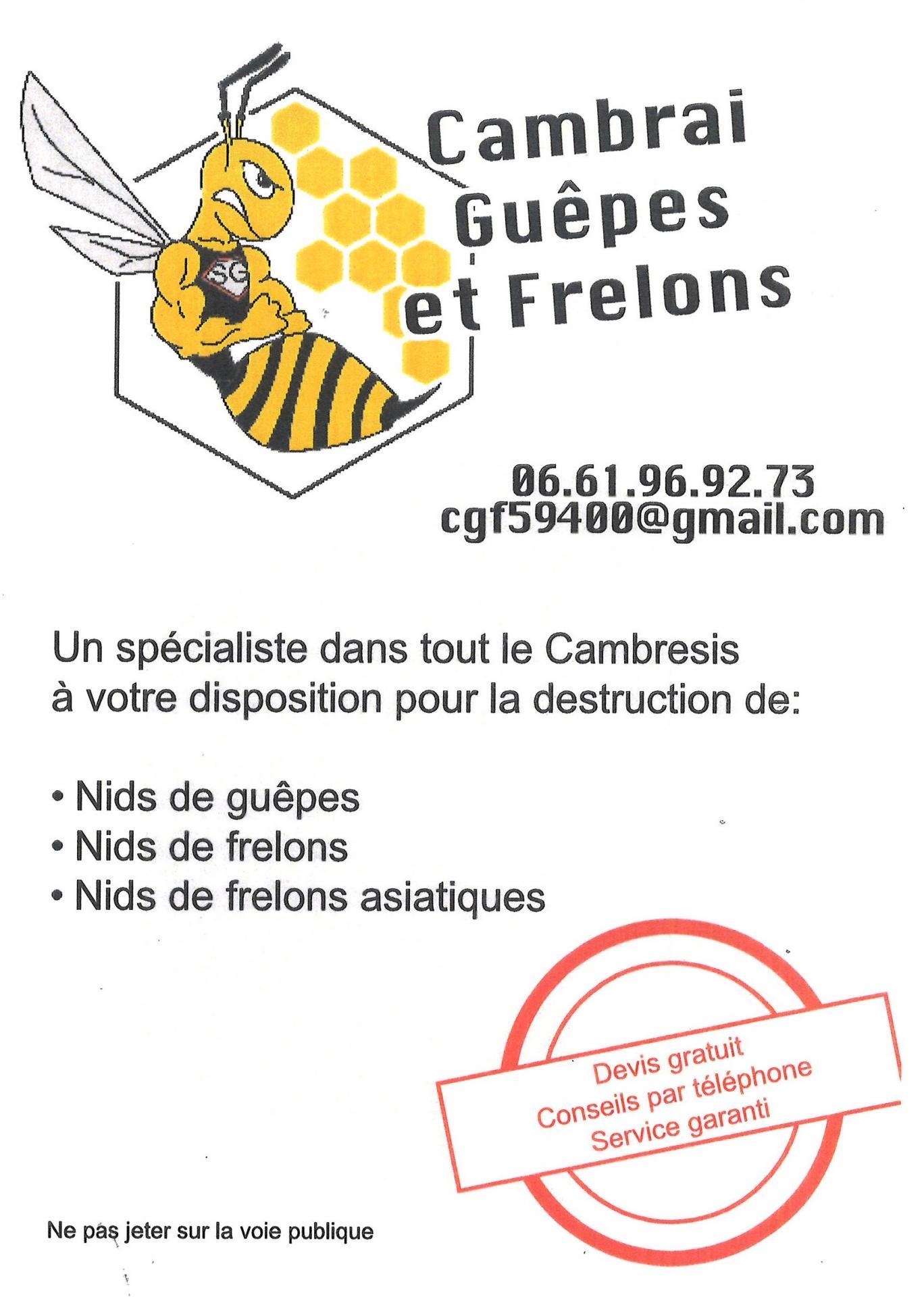 Cambrai guêpes et frelons 2021